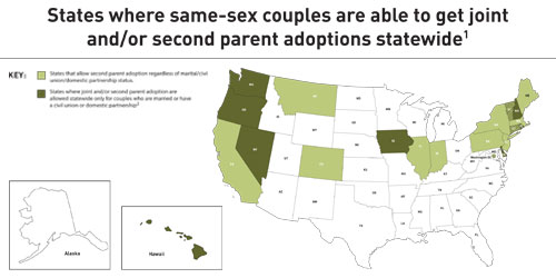 Gay lesbian adoption in north carolina